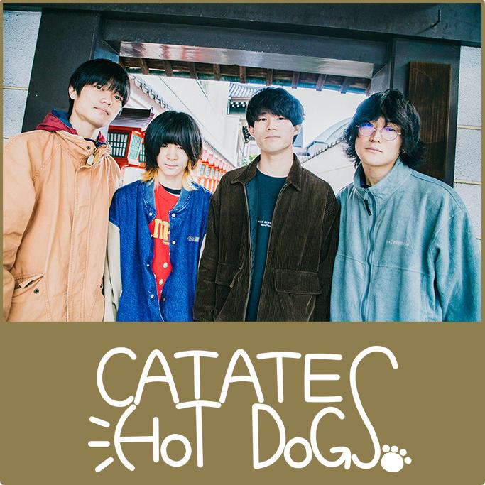 CAT ATE HOTDOGS
